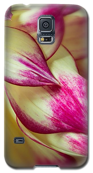 Cascade Galaxy S5 Case