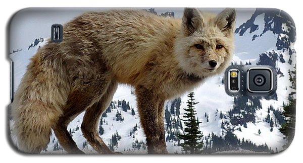 Cascade Red Fox 1 Galaxy S5 Case