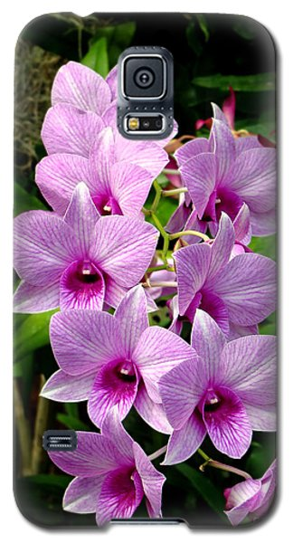 Cascading Lilac Orchids Galaxy S5 Case