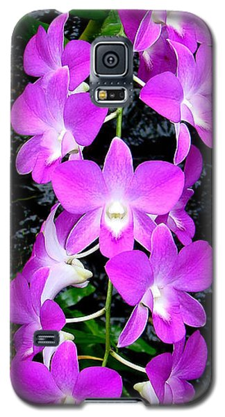 Cascading Orchids Galaxy S5 Case by Sue Melvin