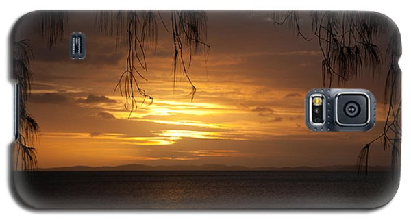 Casuarina Sunset 2 Galaxy S5 Case by Carole Hinding