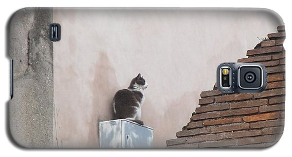Galaxy S5 Case featuring the photograph Cat Above The Roman Ruins by Tiffany Erdman