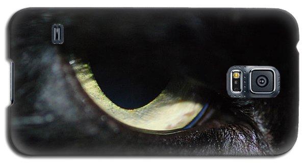 Cat Eye Galaxy S5 Case