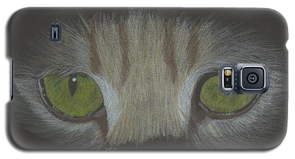 Galaxy S5 Case featuring the drawing Cat Eyes Study by Sheila Byers