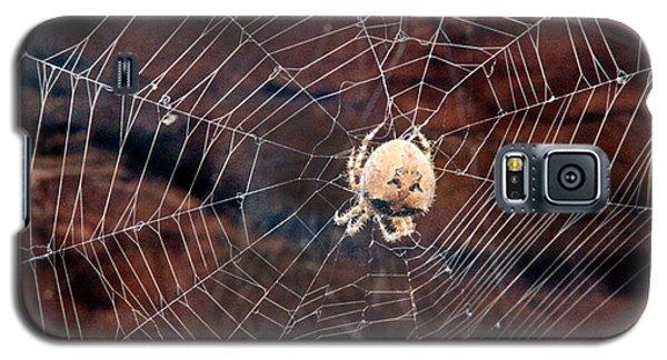 Cat Faced Spider Galaxy S5 Case