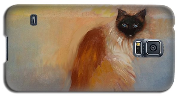 Cat In Surreal Landscape Galaxy S5 Case