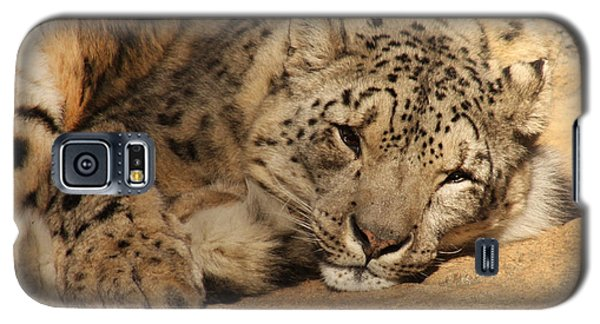Galaxy S5 Case featuring the photograph Cat Nap by Bob and Jan Shriner