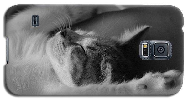 Cat Nap Bw Galaxy S5 Case