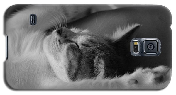 Cat Nap Bw Galaxy S5 Case by Elizabeth Sullivan