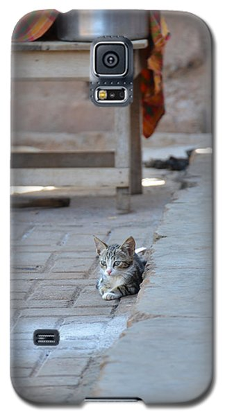 Galaxy S5 Case featuring the photograph Cat Nap II by Ronda Broatch