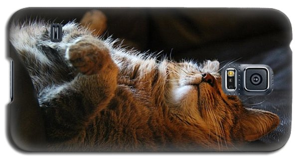 Cat Nap Galaxy S5 Case by Yumi Johnson