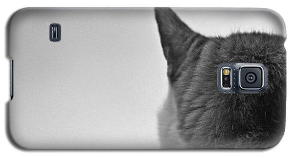 Cat On Alert Galaxy S5 Case