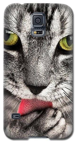 Galaxy S5 Case featuring the photograph Cat by Paul Fearn