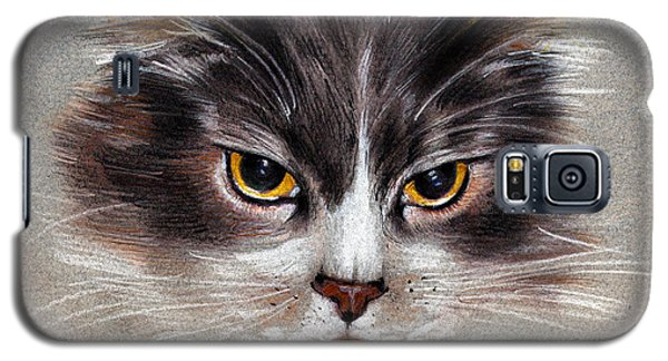 Cat Portrait Yellow Eyes Galaxy S5 Case