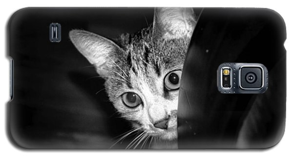 Cat Galaxy S5 Case by Robert Knight