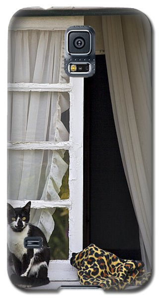 Cat Sitting On The Ledge Of An Open Wood Window Galaxy S5 Case