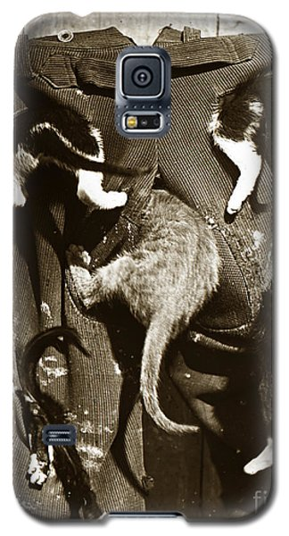 Galaxy S5 Case featuring the photograph Cat Tails By Henry King Nourse Circa 1900 Historical Photos by California Views Mr Pat Hathaway Archives