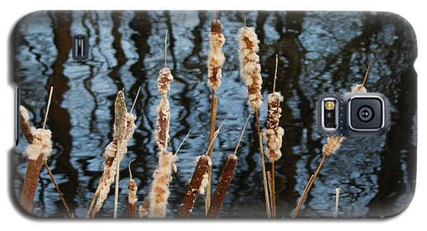 Cat Tails In Winter Galaxy S5 Case by Margie Avellino