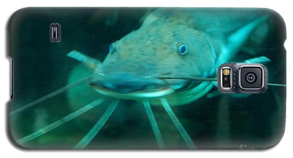 Catfish Billy Galaxy S5 Case