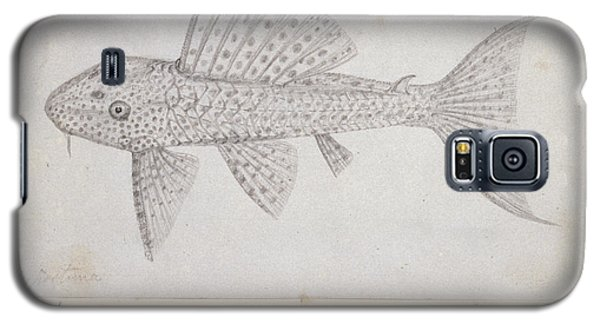 Catfish Galaxy S5 Case by Natural History Museum, London