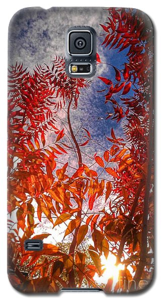 Galaxy S5 Case featuring the photograph Catharsis by CML Brown