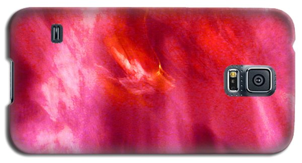 Galaxy S5 Case featuring the digital art Cathedral Of Fire And Light by Menega Sabidussi