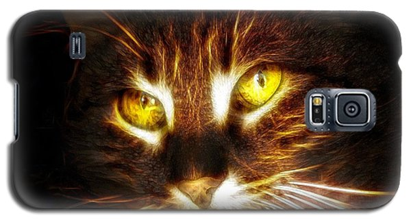 Cat's Eyes - Fractal Galaxy S5 Case