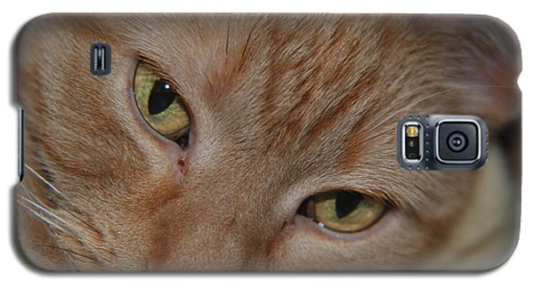 Cat's Eyes Galaxy S5 Case
