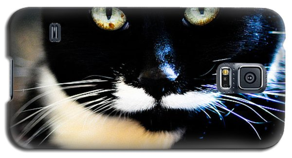 Cats Eyes Galaxy S5 Case
