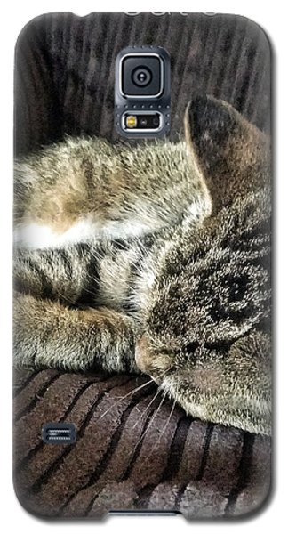 Cat's Life 1 Galaxy S5 Case