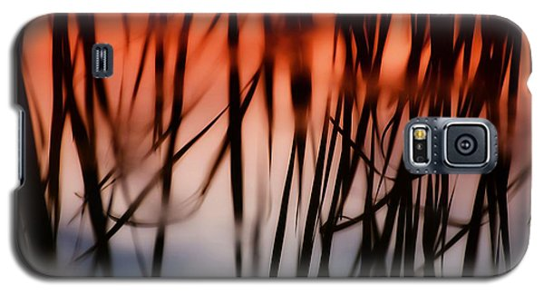 Cattail Reflections Galaxy S5 Case