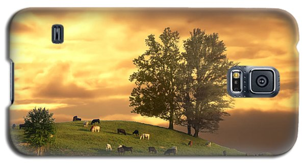 Cattle On A Hill Galaxy S5 Case
