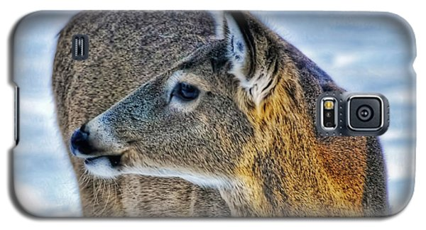 Galaxy S5 Case featuring the photograph Cautious Deer by Trey Foerster