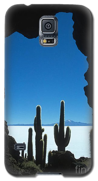 Cave And Cacti Incahuasi Island Galaxy S5 Case