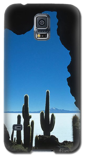 Cave And Cacti Incahuasi Island Galaxy S5 Case