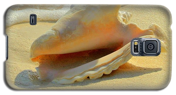 Cayman Conch #1 Galaxy S5 Case