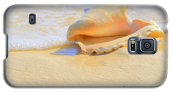 Cayman Conch #2 Galaxy S5 Case