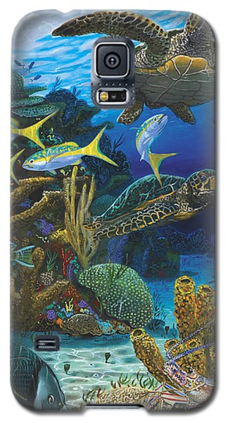 Parrot Galaxy S5 Case - Cayman Turtles Re0010 by Carey Chen