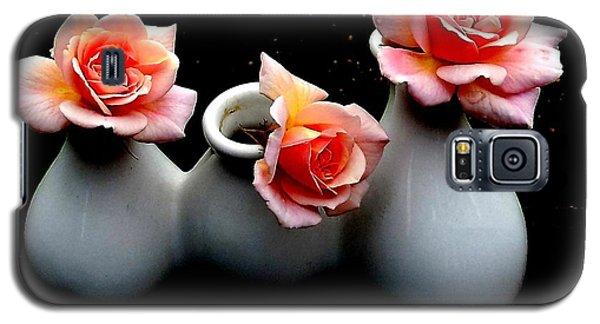 Cecil Brunner Roses Against Black Galaxy S5 Case by Karen Molenaar Terrell