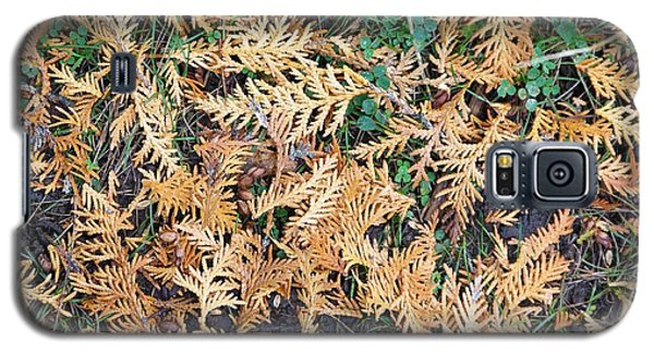 Galaxy S5 Case featuring the photograph Cedar Fall by Sheila Byers