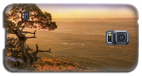 Cedar Tree Atop Mt. Magazine - Arkansas - Autumn Galaxy S5 Case