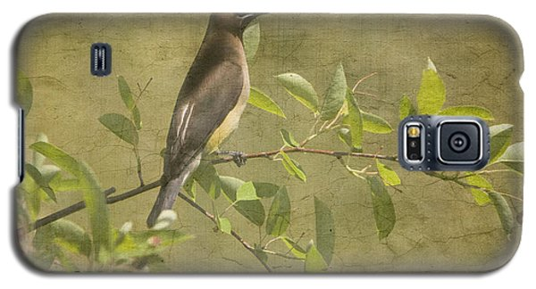 Cedar Waxwing Berry Pickin  Galaxy S5 Case