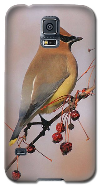 Cedar Waxwing Galaxy S5 Case by Doris Potter