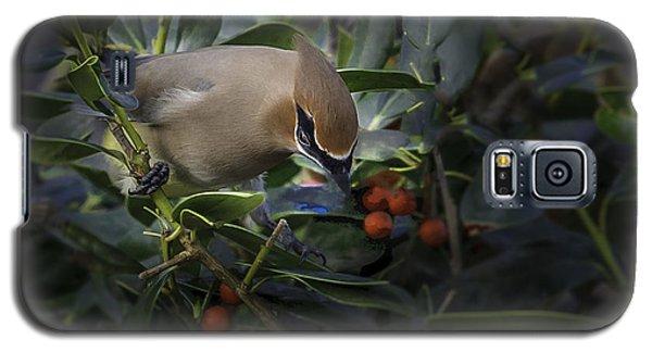 Cedar Waxwings  2012-2 Galaxy S5 Case