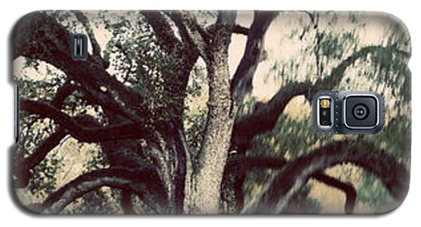 Cemetery Tree Vintage Galaxy S5 Case by Max Mullins