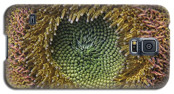 Galaxy S5 Case featuring the photograph Center Of The Sunflower by Yumi Johnson
