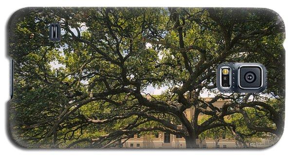 Century Tree Galaxy S5 Case