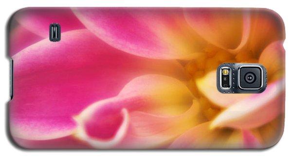 Cerise Galaxy S5 Case by Graham Hawcroft pixsellpix