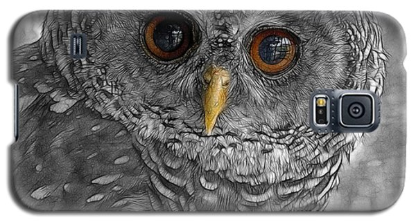 Chacco Owl Galaxy S5 Case