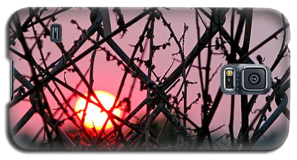 Galaxy S5 Case featuring the photograph Chain Link Sunset by Jennie Breeze
